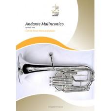 Andante Malinconico